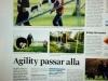 bella_tidning