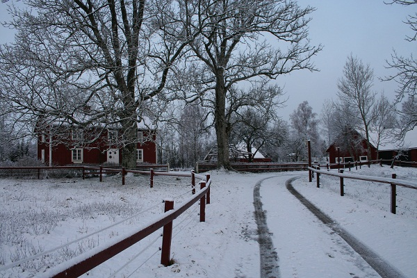 hem_vinter